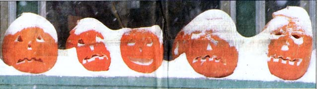 Pumpkins wearing a snowy costume